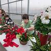 151112 Flower Sale 1