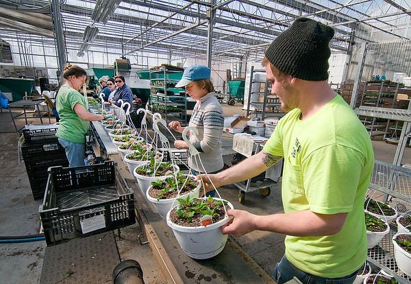 150318 Spring Planting 4