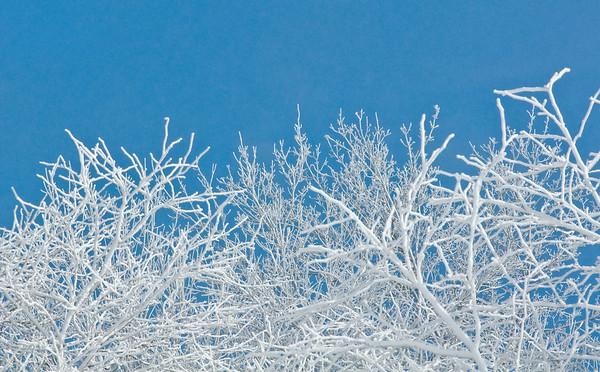 150216 Cold Monday 11