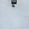150216 Cold Monday 1