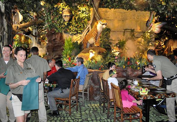 150602 rain forest cafe
