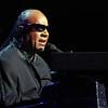 Stevie Wonder 2 - 111915