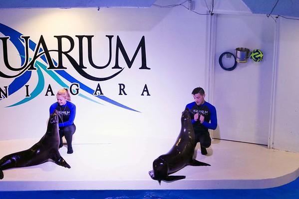 150612 Aquarium 50th 5