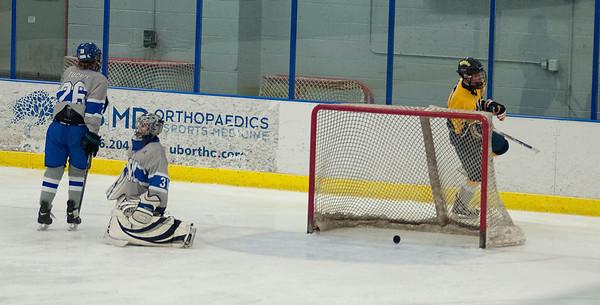 150214 NF VS KW Hockey 2