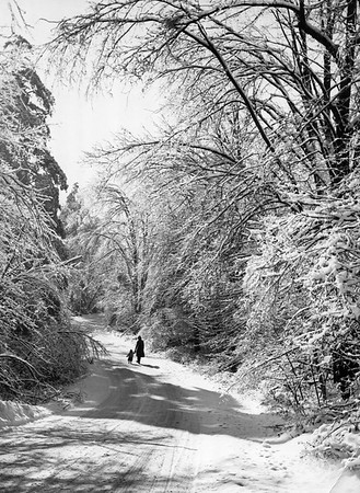 Winter scene along a roadway, no caption.