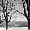 View of Mount Greylock from Oblong Road, williamstown, February, 1961. Photo by William Tague