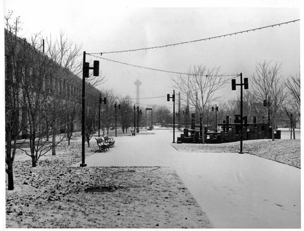 Streets - Falls Street<br /> Rainbow Mall - Formerly Falls Street looking toward Prospect Park. Sears Building on left.<br /> Photto - By Andrew J. Susty - 1/3/1980.