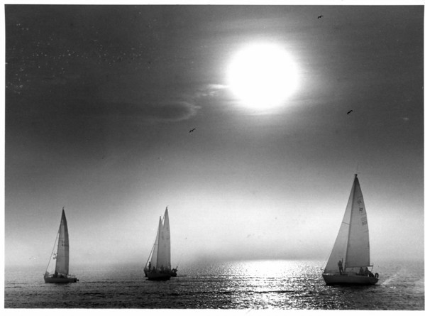 Boats - Sailboats<br /> Sailboat Racing in Wilson, N.Y.<br /> Every Wednesday at 7:00pm the Local Boaters race off of Wilson Pier.<br /> Photo - By Bill Meyers - 6/7/1987.