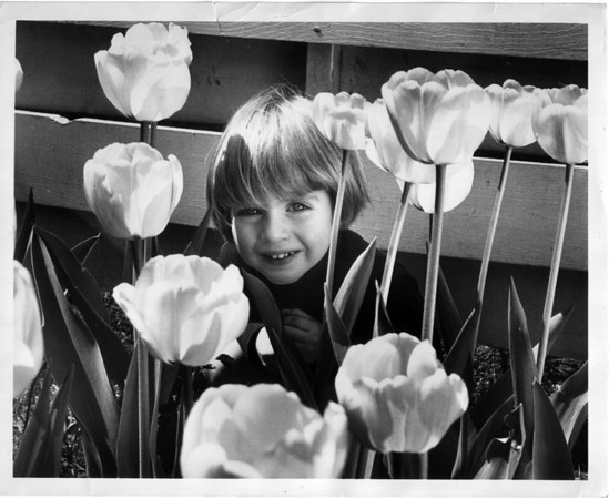 Nature - Flowers<br /> Photo - By Niagara Gazette - 9/28/1971.