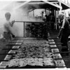 Farming - Chicken<br /> From left to right - Rob wranski and Robert wranski of Barker are flipping chicken as part of the 4-H sponsored chicken  barbeque.<br /> Photo - By John Kudla - 8/5/1983.