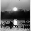 Environmental - Wildlife<br /> Sunrise over the Cayuga Pool overlook at the Iroquois National Wildlife Refuge.<br /> Photo - By James Neiss - 4/15/1992.