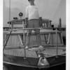 Niagara River - rescues<br /> Rober Holtramp<br /> Photo - By Niagara gazette - 10/14/1966.