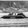 Niagara River - Raf Ride<br /> Photo - By Niagara Gazette - 1975.
