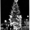 Christmas - Festival of Lights<br /> Videographers film the lighting of a 40 foot Christmas Tree by Oxy Chemical. Families said hello to loved ones in videos which will be sent to the Military in the Gulf.<br /> Photo - By Elisa Olderman - 11/29/1990.