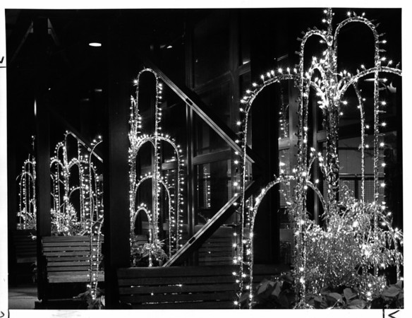 Christmas - Festival of Lights<br /> Inside Wintergarden - 2nd floor windows facing Rainbow Blvd.<br /> Photo - By Andrew J. Susty - 11/25/1981.