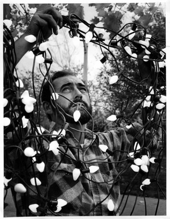 Christmas - Festival of Lights<br /> Joseph Maturani<br /> Photo - By Andrew J. Susty - 11/8/1982.