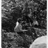 Niagara River - Rescue<br /> Photo - By Niagara Gazette.