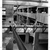 Buildings - Niagar Falls<br /> Rainbow Mall - Iron worker on beam at 3rd level. <br /> Garry Nashwinter of 1275  92nd Street, Niagara Falls<br /> Photo - By L. C. williams - 4/9/1982.