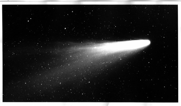 Space - Comet<br /> Photo - By Diane Lynne Payton - 3/14/1976.