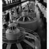 Power Companies, Schoellkopf Plant