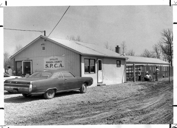 Buildings - SPCA<br /> Niagara County SPCA.<br /> Photo - By L. C. Williams - 5/4/1980.