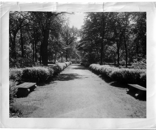 Parks - Schoellkopf<br /> Schoellkopf park<br /> Photo - Niagara Gazette