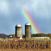 Pendleton, NY - A rainbow brought on by a late afternoon shower, serves as a brilliant backdrop to this sceenic farm on Bear Ridge Road Friday.