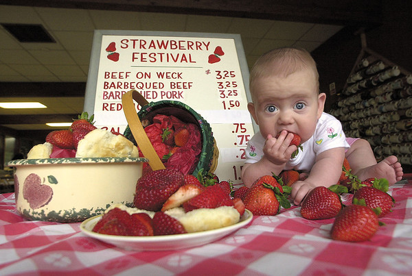 000602 Strawberry Fest - James Neiss Photo - Elena Marshall, 7mos, doughter of Mary Marshall and the Rev. John Marshall was caught red handed eating strawberrys. The Christ Episcopal church at 7145 Fieldcrest Drive is gearing up for it's annual Strawberry Festival Wednesday, June 14 from 4-7pm.