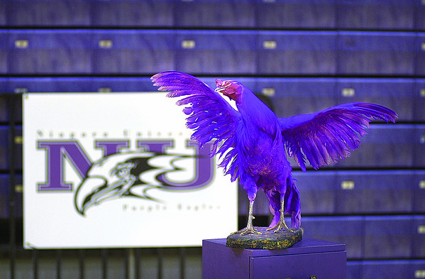 031216 Purple Chicken - James Neiss Photo - Sports/Wednesday - Lewiston. Stuffed 42 year-old Purple Chicken was the trophy for keeping St. Bonaventure from winning a 100 game streak in the 1960's.