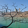 "A leafless tree at Niagara Falls State Park makes for an interesting view of the Niagara Gorge and Niagara Falls, Ontario. ""Crack in Reality"""