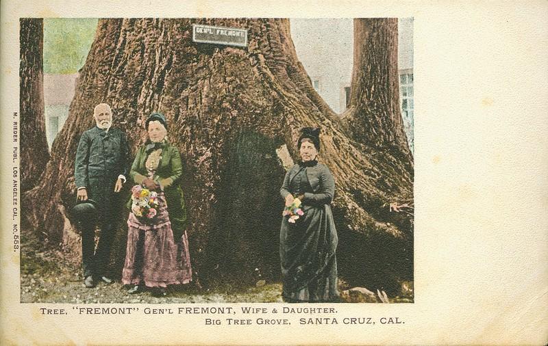 "Tree ""Fremont"", Gen'l Fremont, wife and daughter, Big Tree Grove, Santa Cruz, California, ca. 1907-1914"