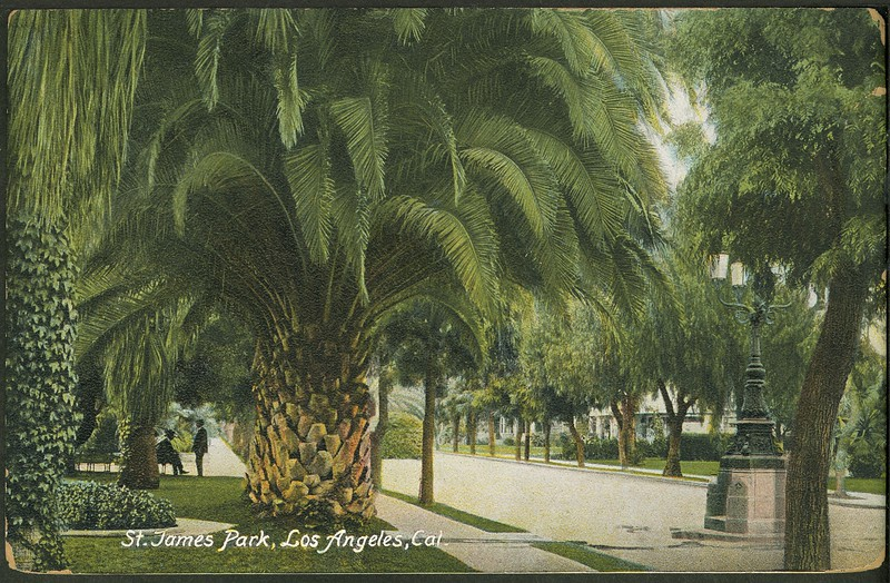 St. James Park, Los Angeles, Cal.