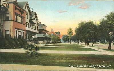 Two storied houses with trees in front. Adams Street, Los Angeles, California, ca. 1915-1930