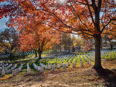 Arlington Cemetery on a crisp fall day - some of the best fall colors are found here, and this serves as a great visual and appropriate compliment to the many men and women who sacrificed for their country.