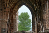 Elgin Cathedral in Elgin Cathedral - 13 May 2018