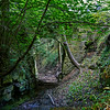 Ravine at Kinneil House in Bo'ness - 28 June 2014