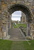 Through the Arch  - Abbey Ruins