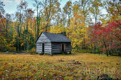 Autumn At The Cole Cabin