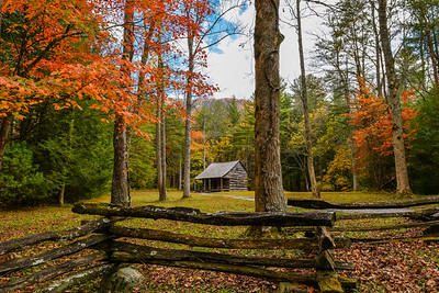 Fall At Carter's Place