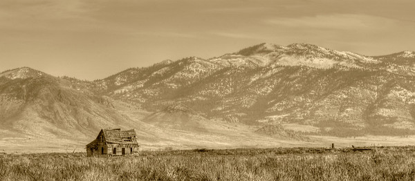 An old farmhouse in Sierra Valley