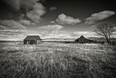 Memories at Twaddle Ranch