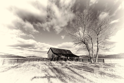 Black and White Twaddle Ranch Scene