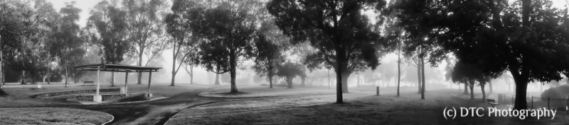 Misty morning (4)