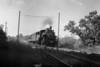1935-12 B&M #1460 Holden_dK