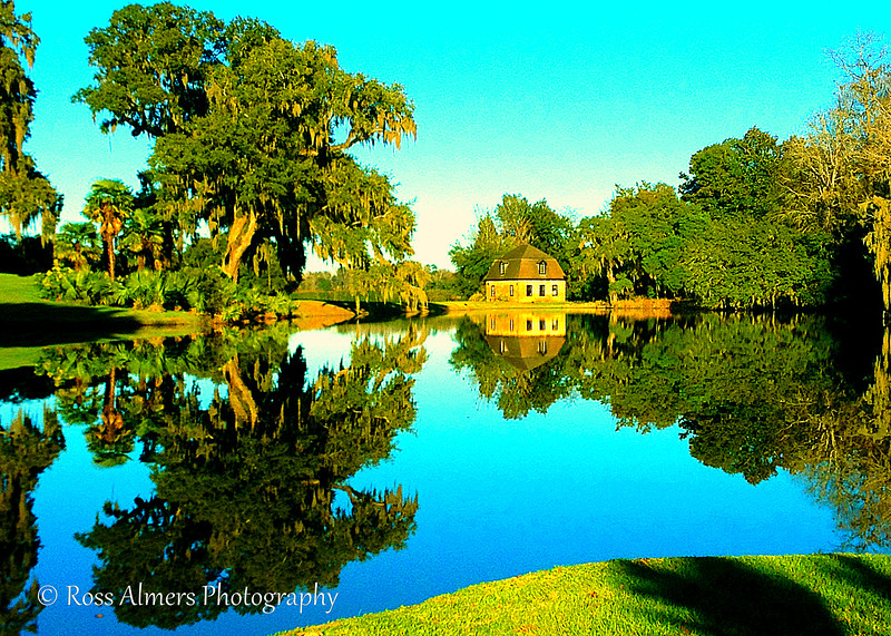 Historic Middleton Place: The Gardens, Grounds, And Wildlife