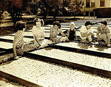 Orchard workers with apricot drying trays in Santa Clara, California 1938