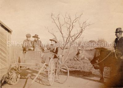 Santa Clara Valley farm scene c. 1918