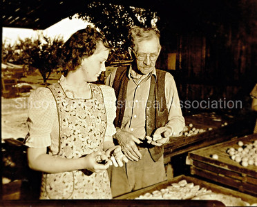 Dorothy Gardner and Carl Johnson at Gardner family orchard in Santa Clara County, California 1938