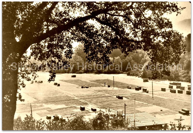 Apricot drying racks in 1936 - Santa Clara Valley, California