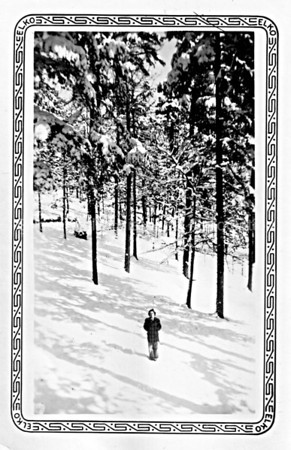 Snowy Woods in Lake Tahoe, California 1936